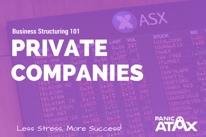 Business Structuring 101: Part 4 – Companies